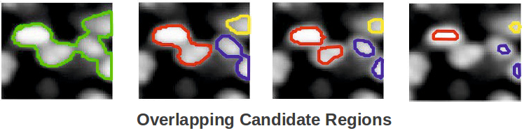 Learning to Detect Cells