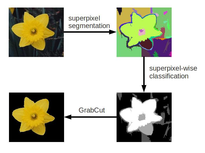 Flower Species Recognition